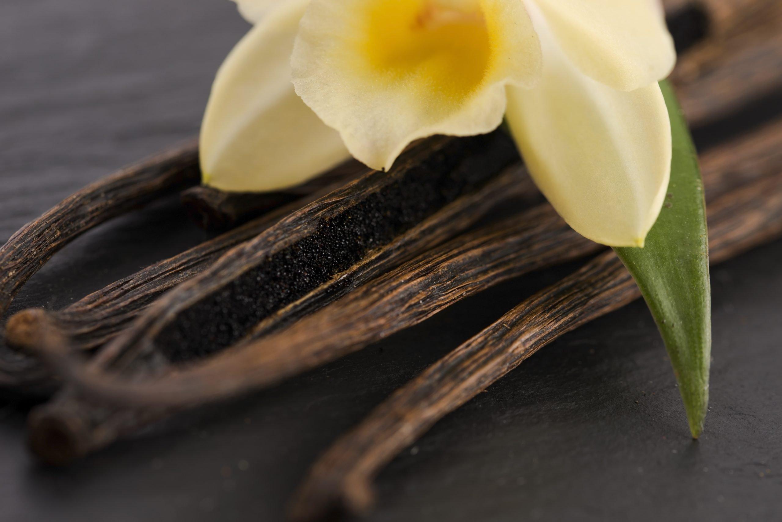 Vanilla Burnt Whiskey Beard Co